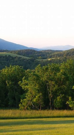 Upper Tract, WV: Mountain View