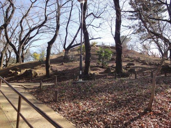 Mt. Hakoneyama