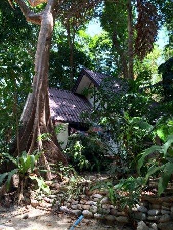Khuraburi, تايلاند: Mietbare Hütten