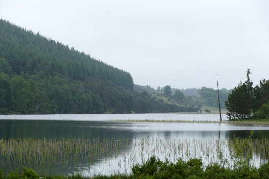 Aviemore and the Cairngorms, UK: a loch in the park
