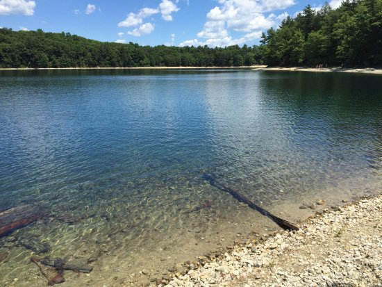 Walden Pond State Reservation : photo1.jpg