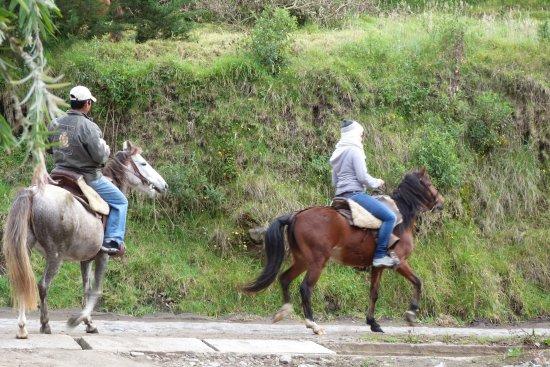 Hacienda Leito: l'option