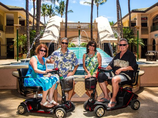 Maui Mobility Systems