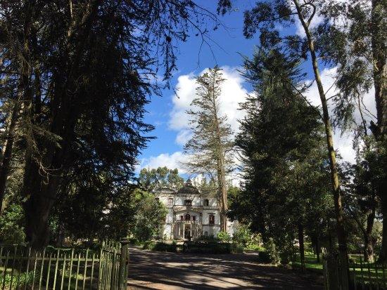 Lasso, Ekuador: photo9.jpg