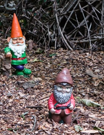 Gnomes and elves are just part of the 'magic' at Tyler Arboretum