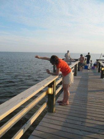 Corolla Light Resort: Crabbing