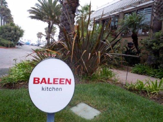 baleenkitchen baleen kitchen - Baleen Kitchen