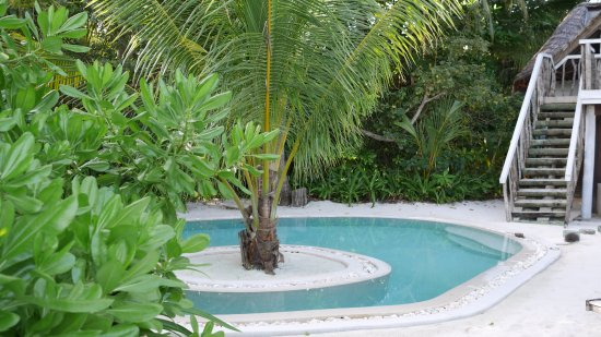 Soneva Fushi Resort: Hytte pool