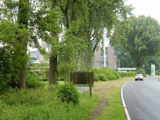 Mercure Amsterdam Airport: バス停からホテルへはこんなところを歩きます。