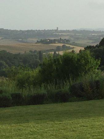 Tenuta Santo Pietro: photo4.jpg