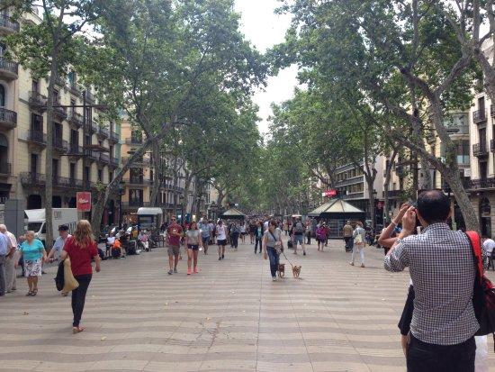 Hotel Ramblas Barcelona Tripadvisor