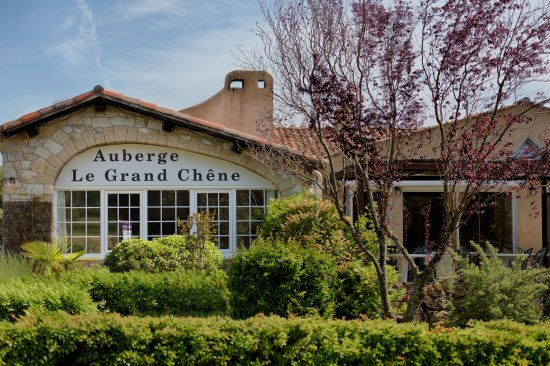 Restaurant le Grand Chene: Le grand chene de Sillans vue de la route
