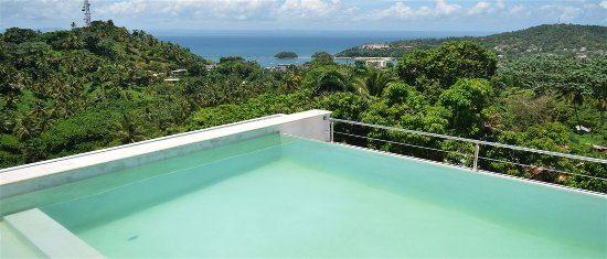 Figaro Boutique Hotel In Samana Dominican Republic Infinity Pool