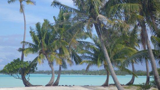 Tuamotu Archipelago, Polinesia Francesa: vue de la pension