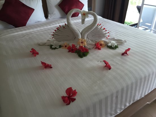 Bay View Resort: Cute towel designs made daily by our house keeper!