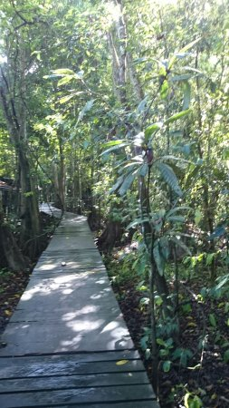 Sandakan Division, Malezya: Uncle Tan Wildlife Camp