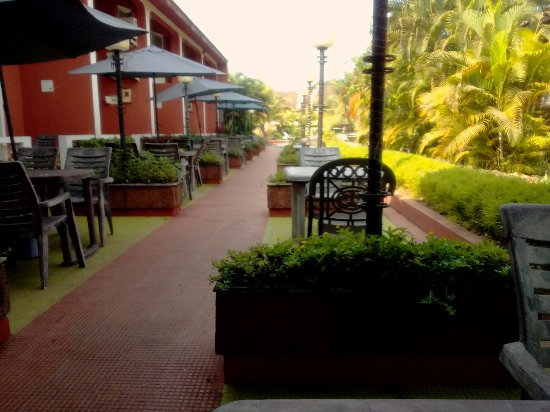 Anjuna, India: IMG_20160221_094127_large.jpg