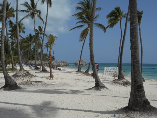 Dreams Palm Beach Punta Cana: Beautiful Beaches!