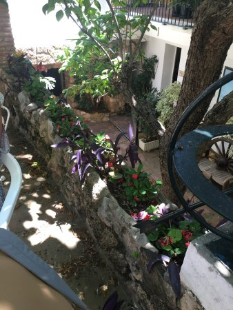 Villa Albero: photo0.jpg
