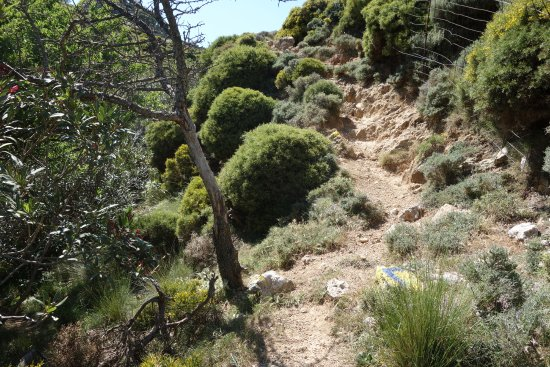 Milia Mountain Retreat: Paths do have color markings