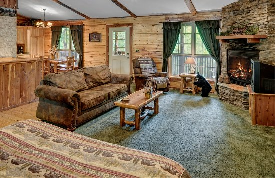 Lake Forest Luxury Log Cabins: King Bed, Fireplace, All the comforts of home! Bear Cub Cabin