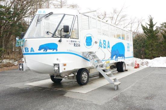 Kaba Bus: KABA號