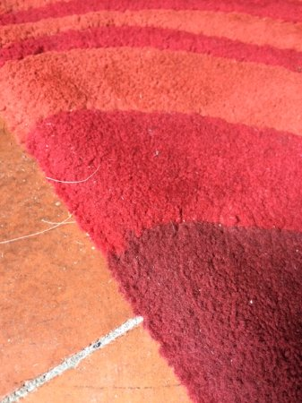 Tanygrisiau, UK: Disgusting living room rug