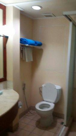 نوفوتيل سورابايا هوتل آند سويتس: The suites bathroom looks miserable and not what I expected from novotel. The chairs and the roo