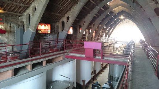 L'Espluga de Francoli, Spain: Museu del Ví.