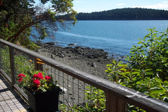 Orcas, WA: View from Sea Dream Cottage Deck