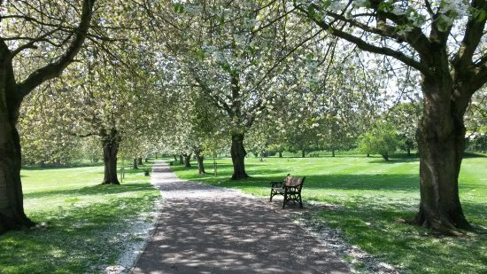 Bourne, UK: Springtime walking through the nearby park
