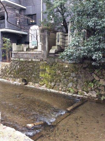 Takasegawa: photo0.jpg