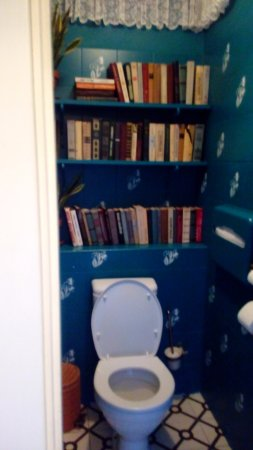detailed look d41fb d053f Bookshelf in the Bathroom - Picture of Nasha Dacha, St ...
