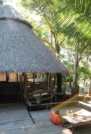 The Mangrove: Terresse og bar