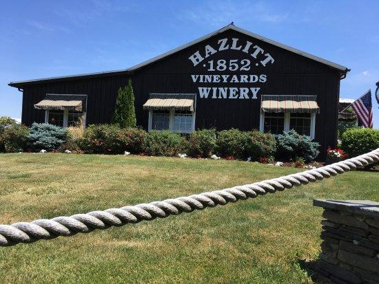 Hector, NY: The winery
