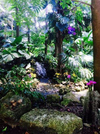 Fairchild Tropical Botanic Garden: Beautiful Gardens With Guided Tour And Butterfly  Garden. We Found