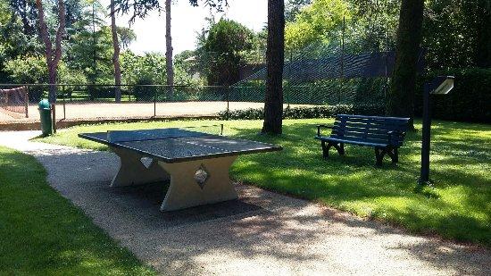 Hotel Garden Terme: Tavolo da ping pong