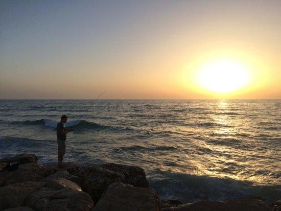 Dan Panorama Tel Aviv: Amazing view