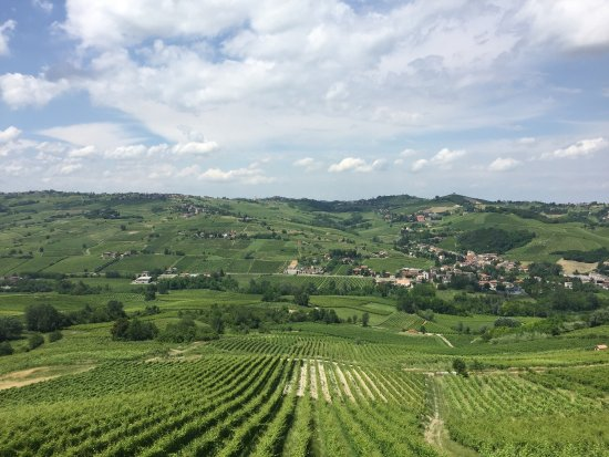 L oltre Pavese è sempre una gran meraviglia le sue valli orlate di vitigni sono un vero spettaco