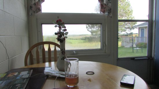 New London Bay Motel : View from the kitchen table in #3