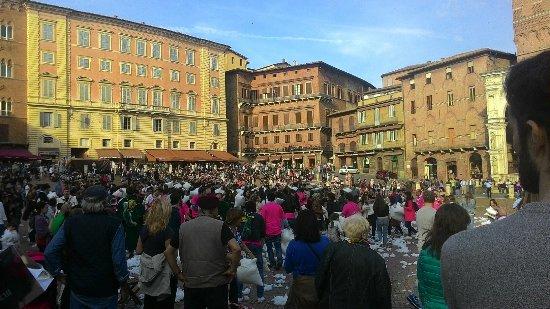 Siena, Italië: IMG-1462634529689-V_large.jpg