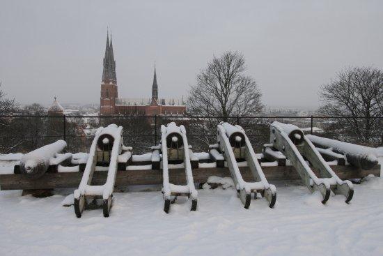 Uppsala, Sweden: A winter view
