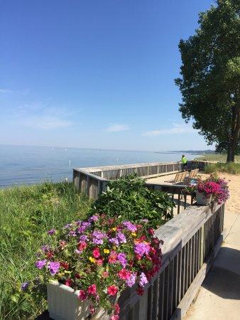 Oval Beach in Saugatuck, Michigan