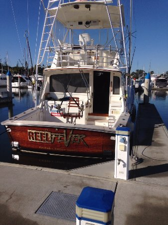 Reel Fever Sportfishing