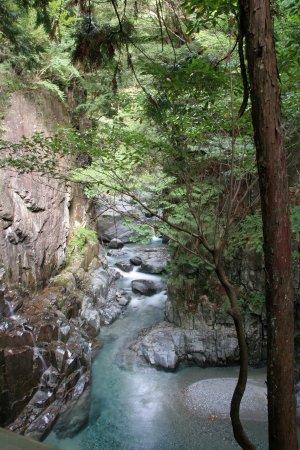 Tsukechi Gorge: エメラルドグリーンの川