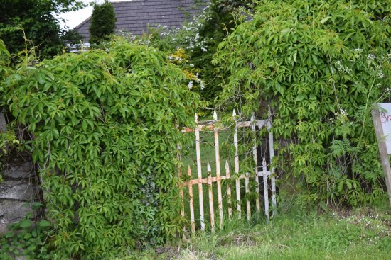 Breagagh View: gate on side of property