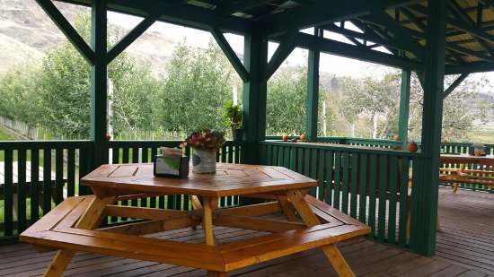 Horstings Farm Market: Their patio is super cute and overlooks their orchard and cows.