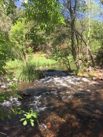 Rancho Sedona RV Park: photo2.jpg