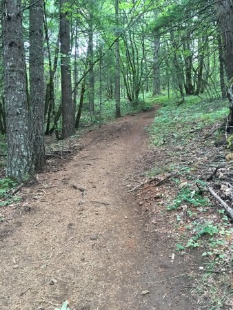 Bingen, WA: Dog Mountain Trail