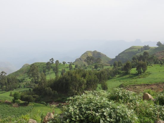 Simien Mountain Trekking and Tours: view from the Simiens